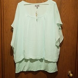 Mint Sheer Top - 3X
